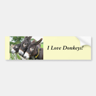 I Love Donkeys! Bumper Sticker