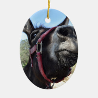 I Love Donkeys! Christmas Ornament