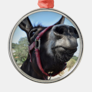I Love Donkeys! Christmas Ornament