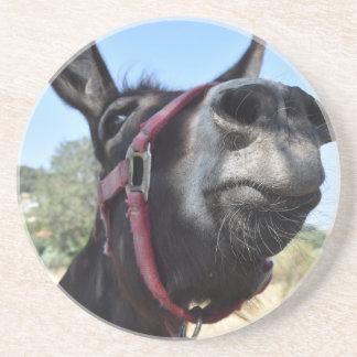 I Love Donkeys! Coaster