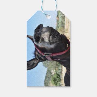 I Love Donkeys! Gift Tags