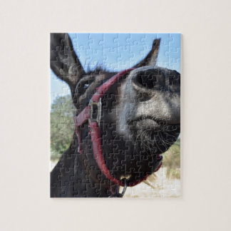 I Love Donkeys! Jigsaw Puzzle