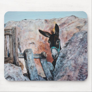 I Love Donkeys! Mouse Mat