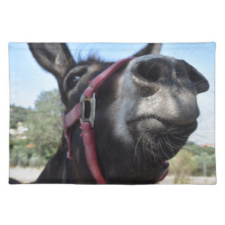 I Love Donkeys! Placemat