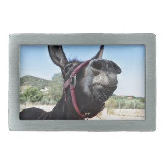 I Love Donkeys! Rectangular Belt Buckle