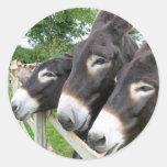 I Love Donkeys! Round Sticker