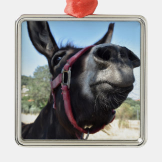 I Love Donkeys! Silver-Colored Square Decoration