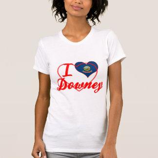 I Love Downey, Idaho T Shirt