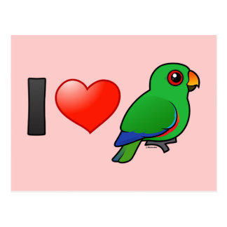 I Love Eclectus Parrots (male) Postcard