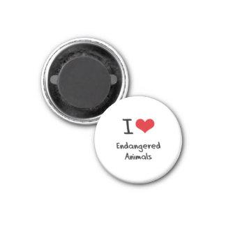 I love Endangered Animals Refrigerator Magnets