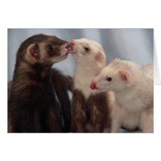 I Love Ferrets Card