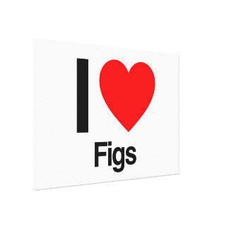 i love figs gallery wrap canvas