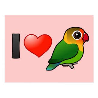 I Love Fischer s Lovebirds Post Cards