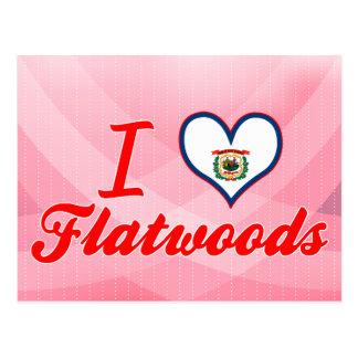I Love Flatwoods, West Virginia Postcard