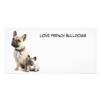 I love French Bulldogs Customised Photo Card