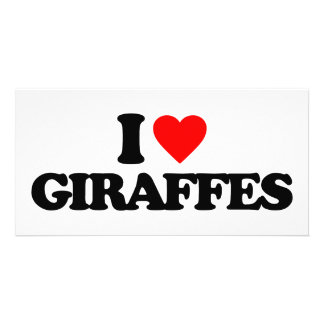 I LOVE GIRAFFES PICTURE CARD
