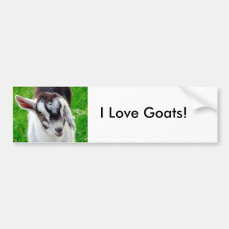 I Love Goats! Bumper Sticker