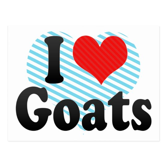 I Love Goats Postcard