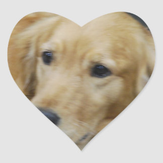 I Love Goldens Stickers
