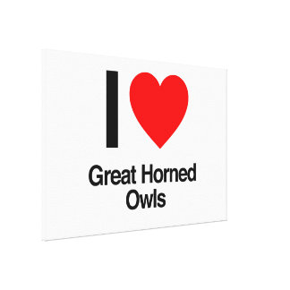 i love great horned owls stretched canvas prints