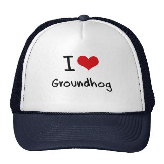 I Love Groundhog Mesh Hats