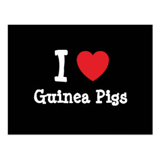 I love Guinea Pigs heart custom personalized Postcard