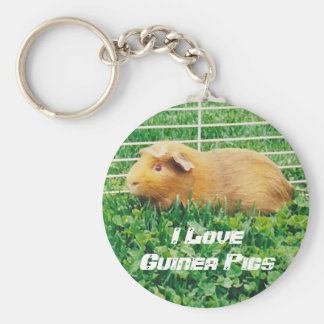 I Love Guinea Pigs Keychain