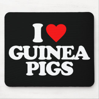 I LOVE GUINEA PIGS MOUSE MAT