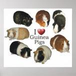 I Love Guinea Pigs Poster