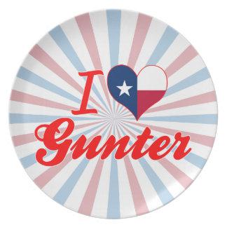 I Love Gunter, Texas Party Plate
