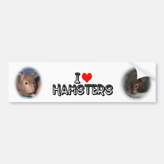 I love Hamsters Bumper Sticker