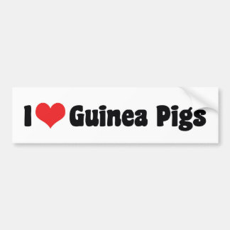 I Love Heart Guinea Pigs Bumper Sticker