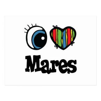 I Love Heart Mares Postcards