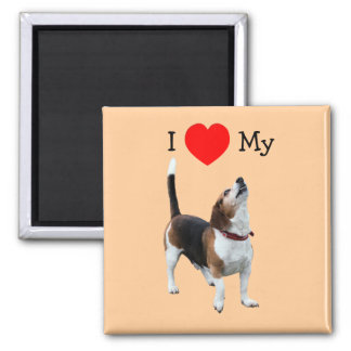 I Love Heart My Beagle Dog Magnet