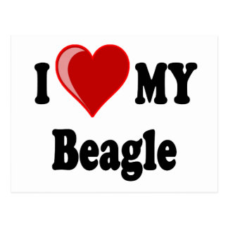 I Love (Heart) My Beagle Dog Postcard