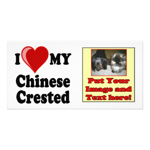 I Love (Heart) My Chinese Crested Dog Photo Card