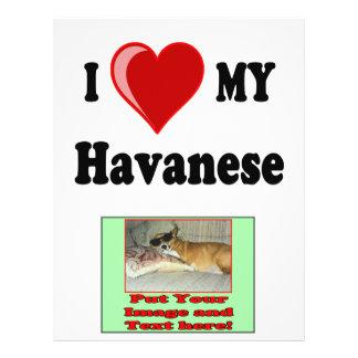 I Love (Heart) My Havanese Dog 21.5 Cm X 28 Cm Flyer