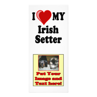 I Love (Heart) My Irish Setter Dog Full Colour Rack Card