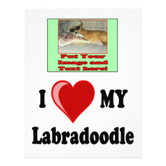 I Love (Heart) My Labradoodle Dog 21.5 Cm X 28 Cm Flyer