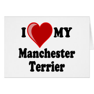 I Love (Heart) My Manchester Dog Greeting Card