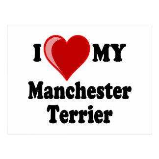 I Love (Heart) My Manchester Dog Postcard