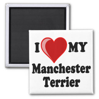 I Love (Heart) My Manchester Dog Square Magnet