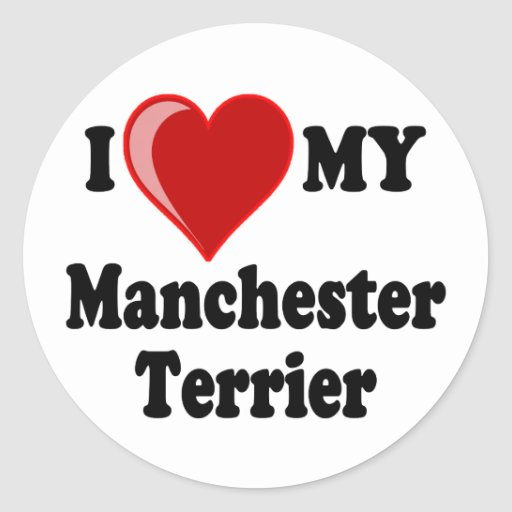 I Love (Heart) My Manchester Dog Stickers