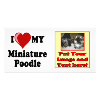 I Love Heart My Miniature Poodle Dog Picture Card