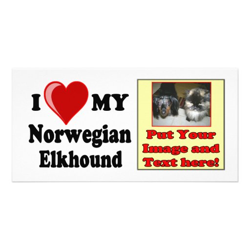 I Love (Heart) My Norwegian Elkhound Dog Picture Card