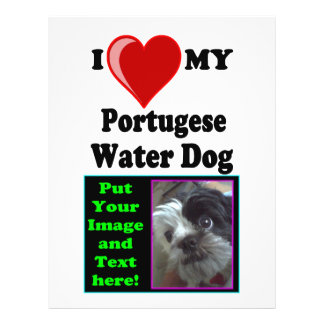 I Love (Heart) My Portugese Water Dog 21.5 Cm X 28 Cm Flyer