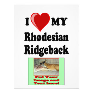 I Love (Heart) My Rhodesian Ridgeback Dog 21.5 Cm X 28 Cm Flyer