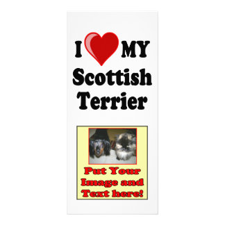 I Love (Heart) My Scottish Terrier Dog Gifts Rack Cards