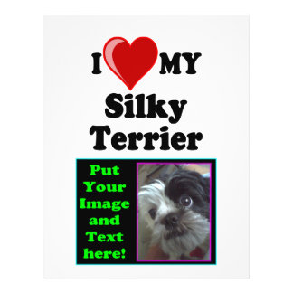 I Love (Heart) My Silky Terrier Dog 21.5 Cm X 28 Cm Flyer