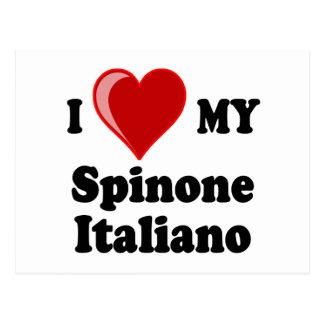 I Love (Heart) My Spinone Italiano Dog Postcard